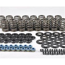 PAC Hot Rod Series LS Engine Kit - PAC-KS14 - Springs, Retainers, Seats, Locks, Seals
